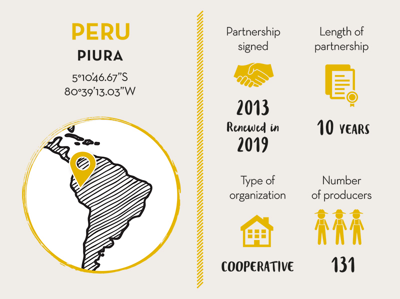 COOPÉRATIVA NORANDINO, Cocoa Partner Peru - Live Long Valrhona