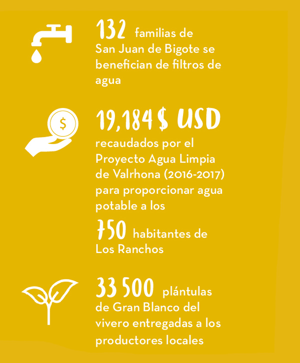 COOPERATIVA NORANDINO COLABORADOR CACAO PERÚ - Live Long Valrhona